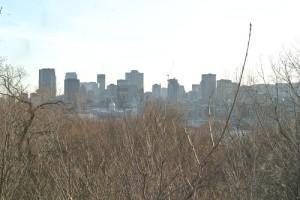 Vue sur le centre de Montréal