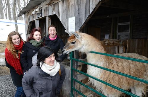 Serge le Lama se lie d'affinités avec Marion !