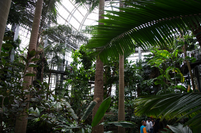 US-botanic-garden-2